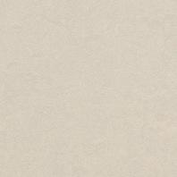 Marmoleum Fresco Edelweiss