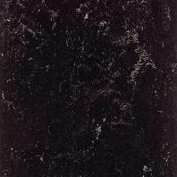 Marmoleum Dual black