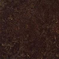 Marmoleum Dual dark bistre