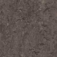 Marmoleum Dual graphite
