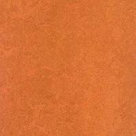 Marmoleum Fresco African desert