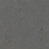 Marmoleum Concrete Comet