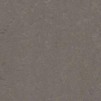 Marmoleum Concrete Meteorite