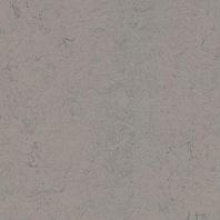 Marmoleum Concrete Satellite