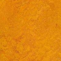 Marmoleum Dual Marigold