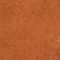 Marmoleum Dual rust