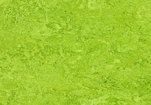 Marmoleum Real chartreuse