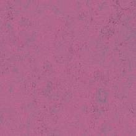 Marmoleum Concrete Purple glow