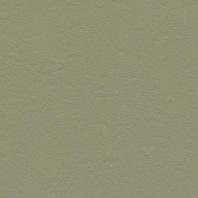 Marmoleum Click Rosemary green