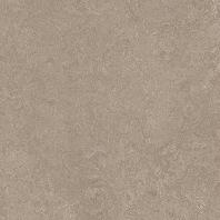 Marmoleum Fresco Sparrow